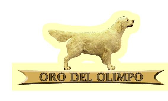 Oro del Olimpo