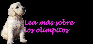 leams2